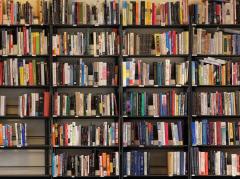 Разговор у книжной полки